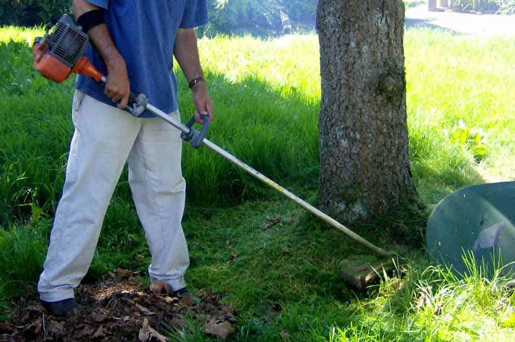 Lawn & Gardening rental equipment services | Grass Trimmer